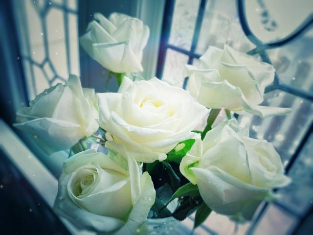 純潔の白薔薇ブーケ