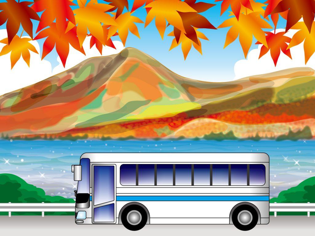 色づいたもみじに映える山を走るバス